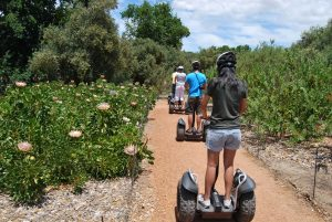 segway spier sonia cabano blog eatdrinkcapetown