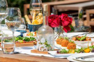food wine terra del capo sonia cabano blog eatdrinkcapetown