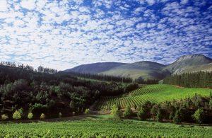 elgin valley mountains sonia cabano blog eatdrinkcapetown