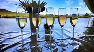 bubbly breede river ww sonia cabano blog eatdrinkcapetown