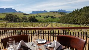 view vineyards clos malverne sonia cabano blog eatdrinkcapetown