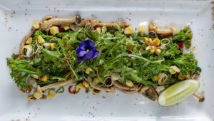 broccoli tataki chef kerry kilpin vegan menu steenberg bistro sixteen82 sonia cabano blog eatdrinkcapetown food wine travel