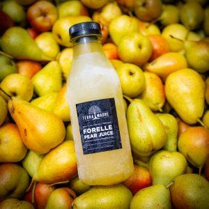 pear juice terra madre sonia cabano blog eatdrinkcapetown