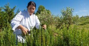 nicole precoudis herbs terrra madre sonia cabano blog eatdrinkcapetown