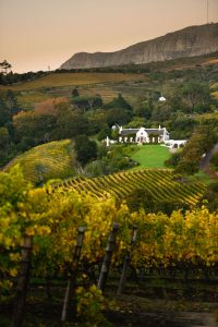 constantia glen photo craig fraser sonia cabano blog eatdrinkcapetown