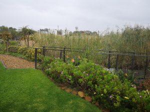 garden, hotel verde cape town sonia cabano blog eatdrinkcapetown