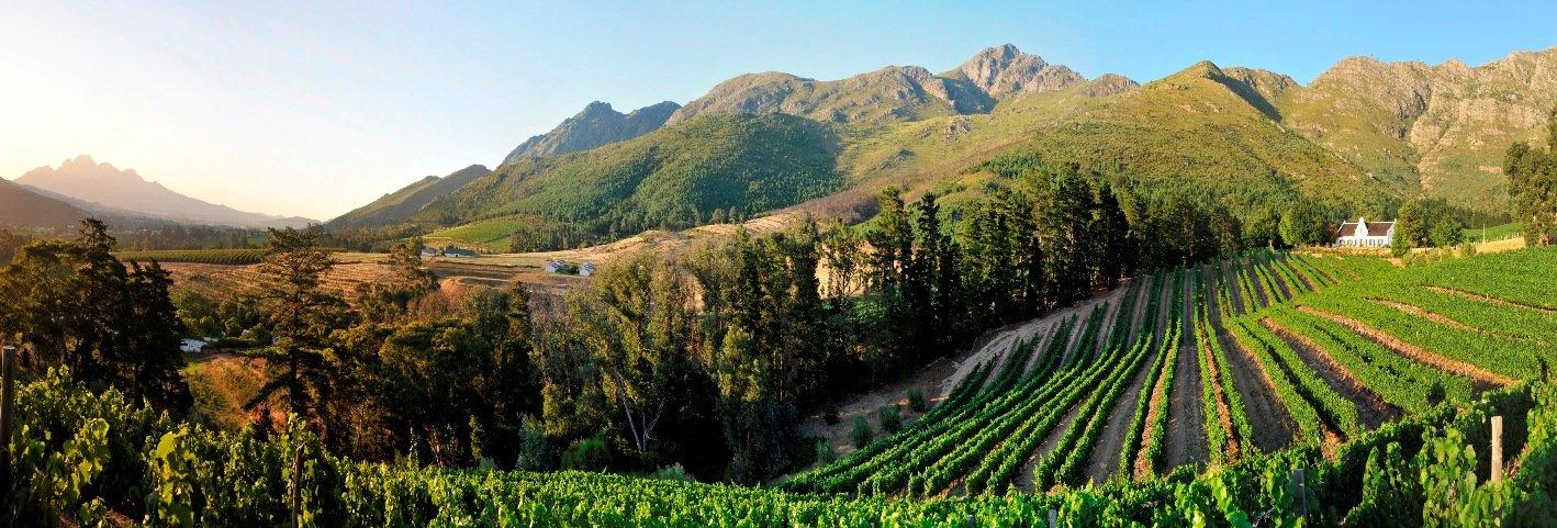 Franschhoek valley sonia cabano blog eatdrinkcapetown