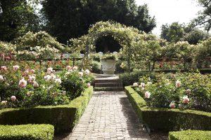 cellars hohenort gardens open gardens sonia cabano blog eatdrinkcapetown
