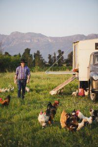 jg chickens avondale sonia cabano blog eatdrinkcapetown