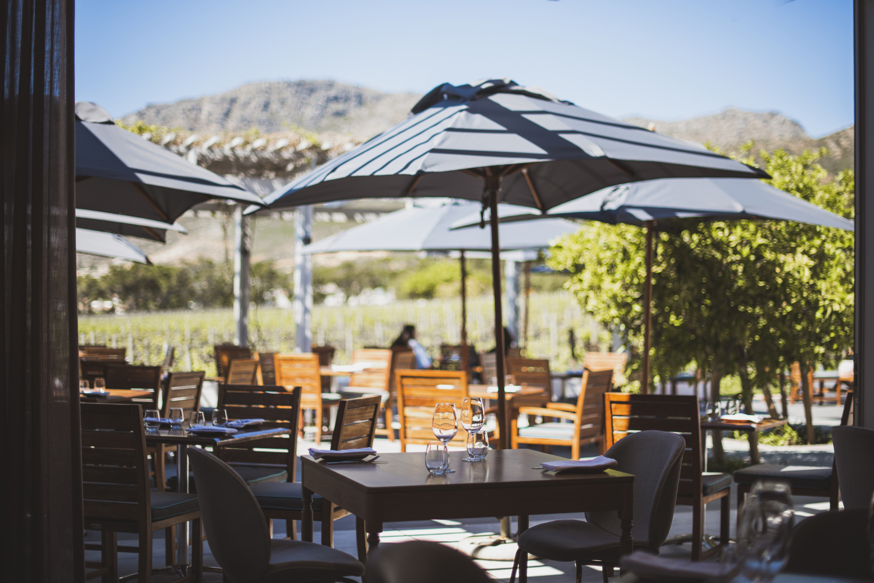 Alfresco breakfast lunch Tryn Steenberg Sonia Cabano blog eatdrinkcapetown
